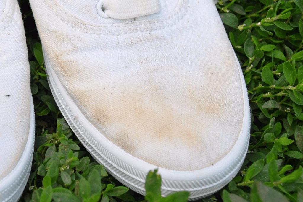 Beyaz Spor Ayakkabı Bez Kumaş Ayakkabı Nasıl TemizlenirDiş Macunu İle